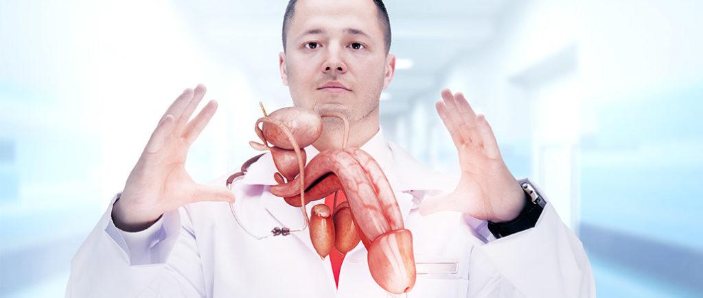 Bei Problemen mit dem Penis zum Arzt gehen | © Vitte Yevhen - stock.adobe.com