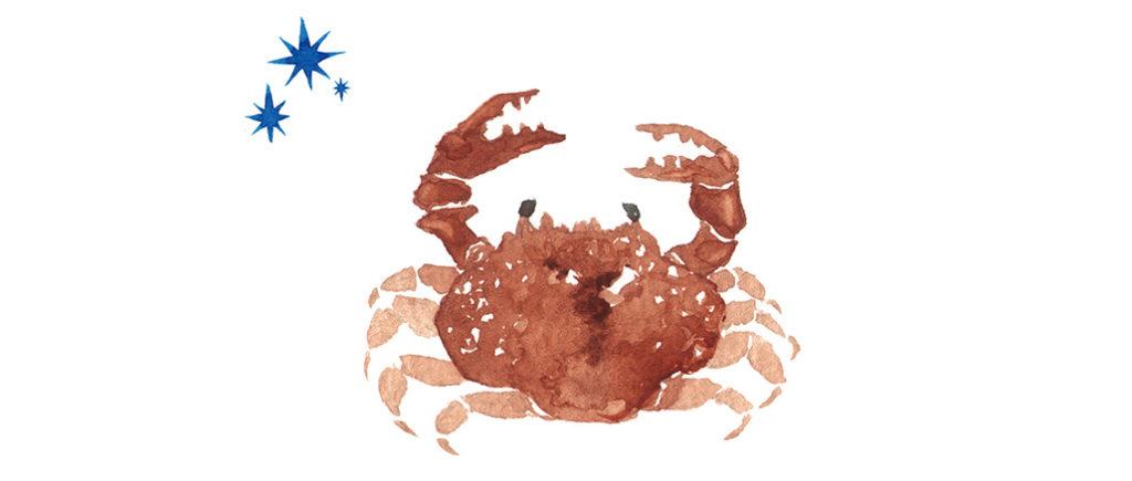 Sternzeichen für Männer Krebs | © tada - stock.adobe.com